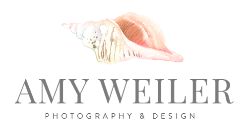 amy weiler photography logo web